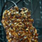 Pumpkin Seed Cocoa Nib Brittle